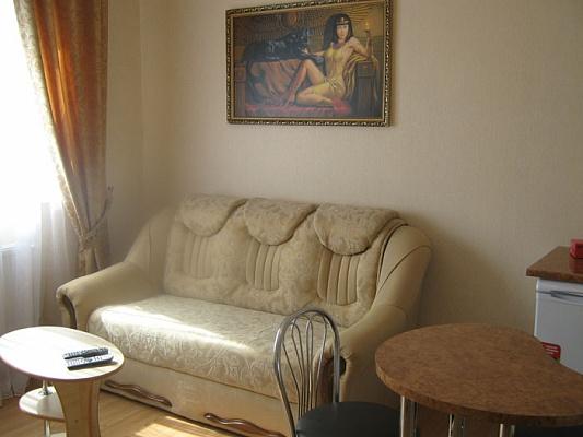 1-комнатная квартира посуточно в Виннице. Ленинский район, Константиновича 8, 1-й. Фото 1