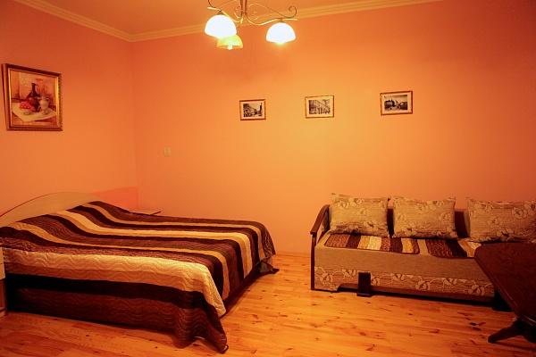1-комнатная квартира посуточно в Львове. Галицкий район, ул. Князя Романа, 36. Фото 1
