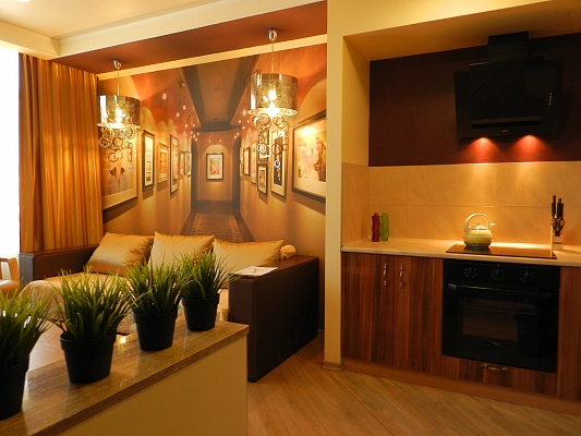 1-комнатная квартира посуточно в Киеве. Днепровский район, ул. Ованеса Туманяна, 3. Фото 1