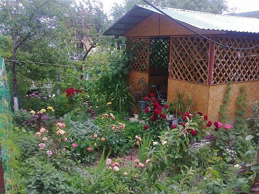 Дом  посуточно в Феодосии. ул. Самариной, 55. Фото 1