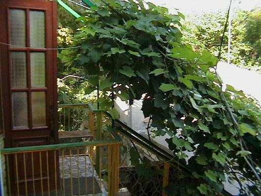 2-комнатная квартира посуточно в Евпатории. Приморская, 14. Фото 1