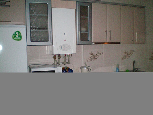1-комнатная квартира посуточно в Николаеве. Центральный район, ул. Шевченко, 64а. Фото 1