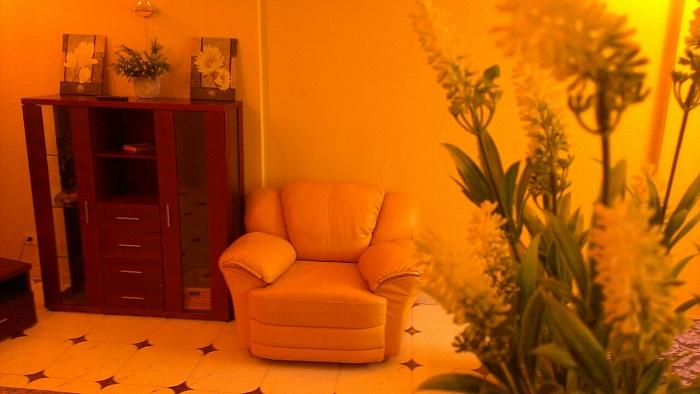 1-комнатная квартира посуточно в Киеве. Днепровский район, ул. Туманяна, 3. Фото 1