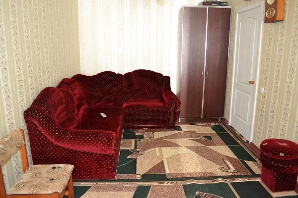 1-комнатная квартира посуточно в Никополе. ул. Шевченко, 200. Фото 1