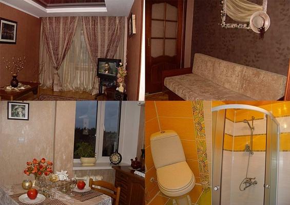 1-комнатная квартира посуточно в Виннице. Ленинский район, ул. Пирогова, 23. Фото 1