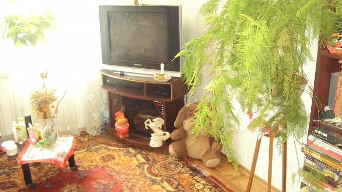 4-комнатная квартира посуточно в Каменце-Подольском. пер. Круглый, 6. Фото 1