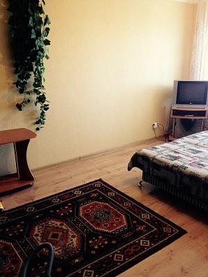 1-комнатная квартира посуточно в Виннице. Замостянский район, ул. Короленко, 33. Фото 1