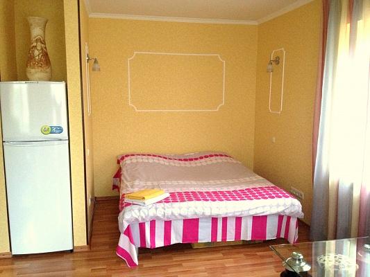 1-комнатная квартира посуточно в Донецке. Киевский район, ул. Университетская, 75. Фото 1