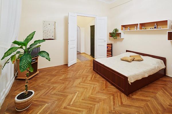 2-комнатная квартира посуточно в Львове. Галицкий район, ул. И. Франко, 59. Фото 1