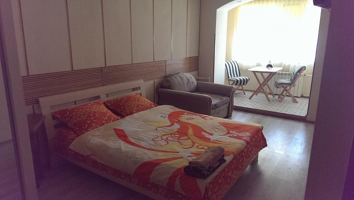 1-комнатная квартира посуточно в Киеве. Голосеевский район, Владимирская, 76. Фото 1
