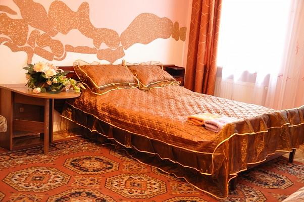 1-комнатная квартира посуточно в Львове. Шевченковский район, ул. Клепаровская, 10. Фото 1