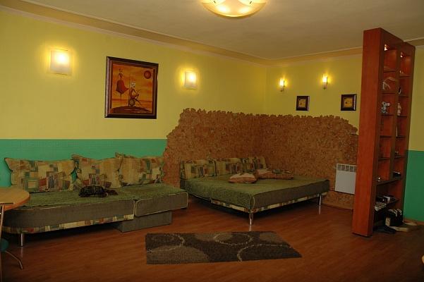 1-комнатная квартира посуточно в Днепропетровске. Октябрьский район, пр-т Гагарина, 3. Фото 1