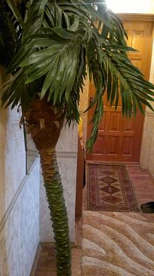 2-комнатная квартира посуточно в Житомире. ул. Московская, 35. Фото 1