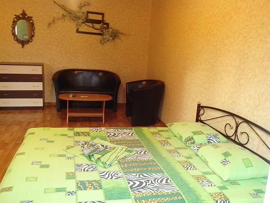 1-комнатная квартира посуточно в Горловке. ул. Рудакова, 29. Фото 1