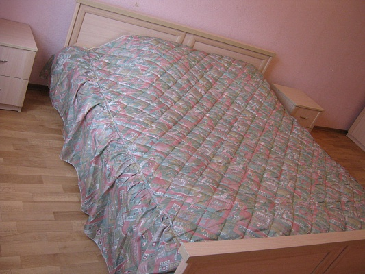 3-комнатная квартира посуточно в Киеве. Дарницкий район, ул. Чавдар, 4. Фото 1