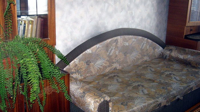 2-комнатная квартира посуточно в Кировограде. Ленинский район, ул. Калинина, 41. Фото 1