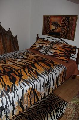2-комнатная квартира посуточно в Одессе. Приморский район, пер. Воронцовский, 3. Фото 1