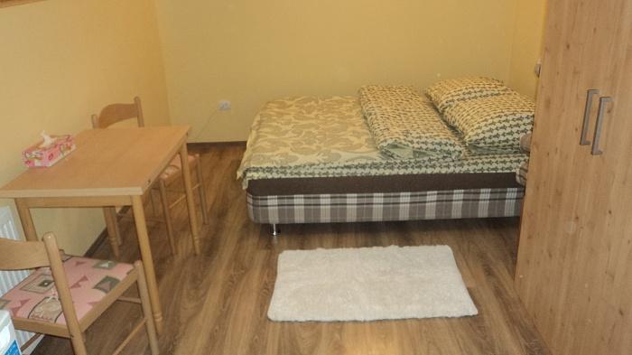 1-комнатная квартира посуточно в Ужгороде. ул. Шумная, 20. Фото 1