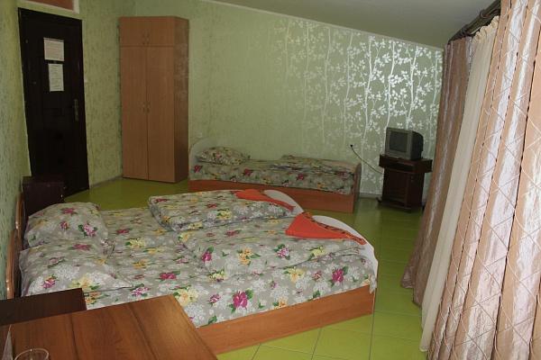 1-комнатная квартира посуточно в Борисполе. ул. Горького, 6-а. Фото 1