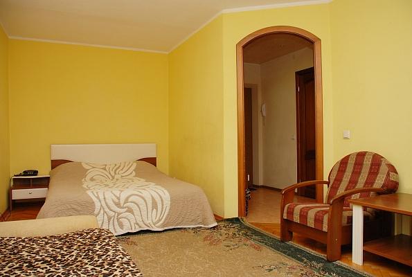 1-комнатная квартира посуточно в Киеве. Голосеевский район, ул. Владимирская, 89. Фото 1