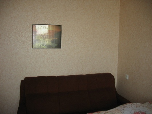1-комнатная квартира посуточно в Житомире. ул. Витрука, 57. Фото 1