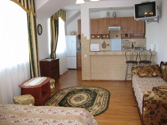1-комнатная квартира посуточно в Трускавце. ул. Помирецкая. Фото 1