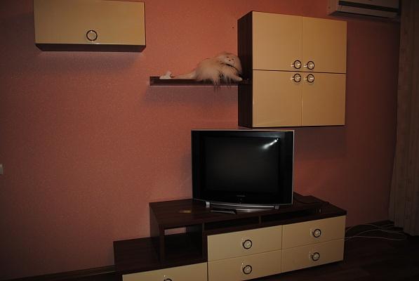 1-комнатная квартира посуточно в Черкассах. ул. Шевченко, 250. Фото 1