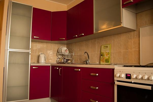 1-комнатная квартира посуточно в Николаеве. Заводской район, ул. Пограничная (Чигрина), 3. Фото 1