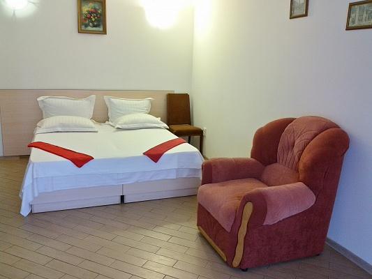 1-комнатная квартира посуточно в Ивано-Франковске. ул. Михновского, 14. Фото 1