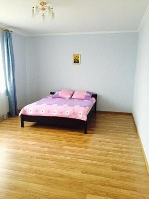 1-комнатная квартира посуточно в Львове. Сыховский район, ул. Пасечная, 171. Фото 1