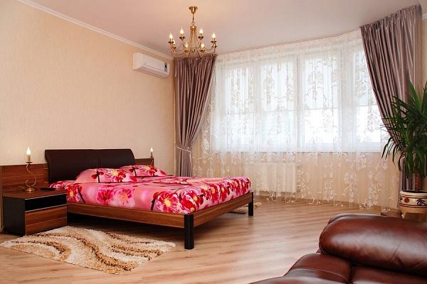 1-комнатная квартира посуточно в Киеве. Днепровский район, ул. Луначарского, 10. Фото 1