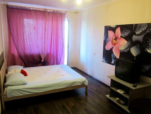 1-комнатная квартира посуточно в Чернигове. Деснянский район, ул. Рокоссовского, 25. Фото 1