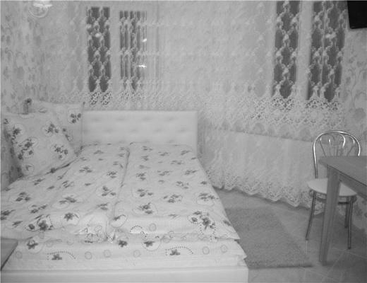 1-комнатная квартира посуточно в Одессе. Приморский район, ул. Гимназическая, 28. Фото 1
