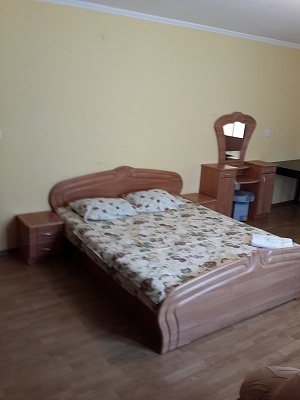 1-комнатная квартира посуточно в Ужгороде. ул. Генерала Свободы, 5. Фото 1