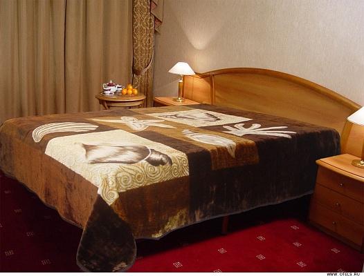 1-комнатная квартира посуточно в Киеве. ул. Щусева, 10. Фото 1