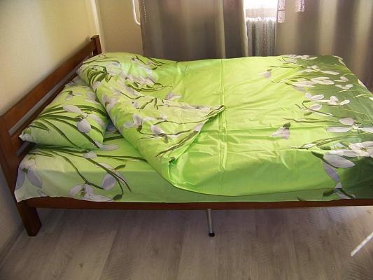 1-комнатная квартира посуточно в Чернигове. Деснянский район, ул. Пятницкая, 61. Фото 1