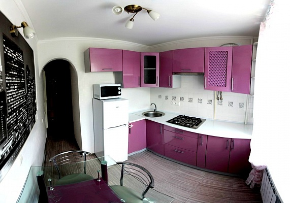1-комнатная квартира посуточно в Николаеве. Заводской район, ул. Московская, 54 А. Фото 1