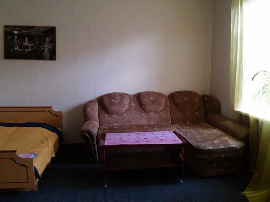 1-комнатная квартира посуточно в Житомире. ул. Большая Бердичевская, 11. Фото 1