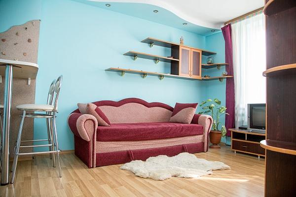 1-комнатная квартира посуточно в Львове. Франковский район, ул. Городоцкая, 167. Фото 1