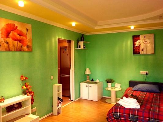 1-комнатная квартира посуточно в Киеве. Голосеевский район, ул. Жилянская, 45. Фото 1
