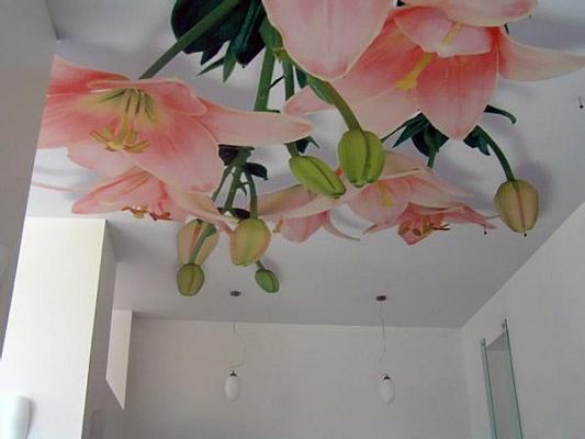 1-комнатная квартира посуточно в Одессе. Малиновский район, ул. Академика Филатова, 68. Фото 1