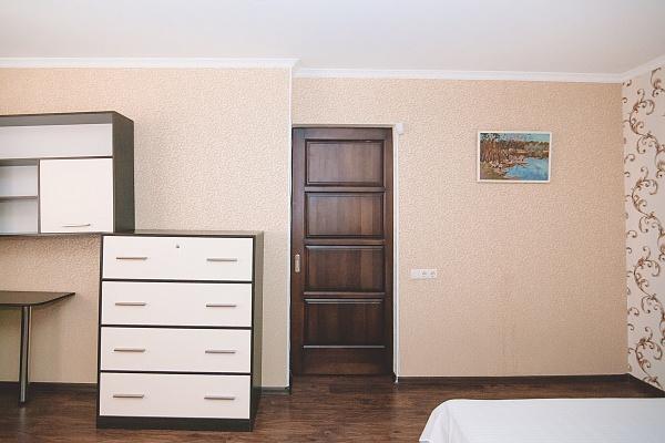 1-комнатная квартира посуточно в Сумах. Ковпаковский район, Ильинская , 10. Фото 1