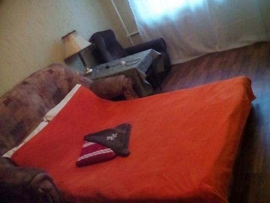 1-комнатная квартира посуточно в Киеве. Днепровский район, ул. Курнатовского, 17а. Фото 1