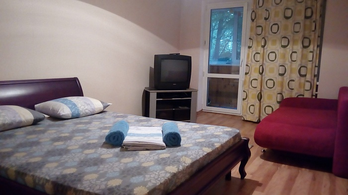 1-комнатная квартира посуточно в Киеве. Днепровский район, б-р Дарницкий, 4. Фото 1
