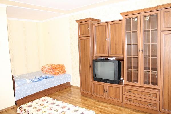 1-комнатная квартира посуточно в Виннице. Ленинский район, Хмельницкое шоссе, 2. Фото 1