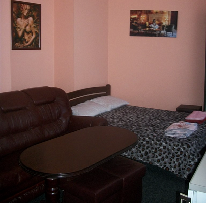 1-комнатная квартира посуточно в Львове. Галицкий район, ул. Князя Романа, 7. Фото 1