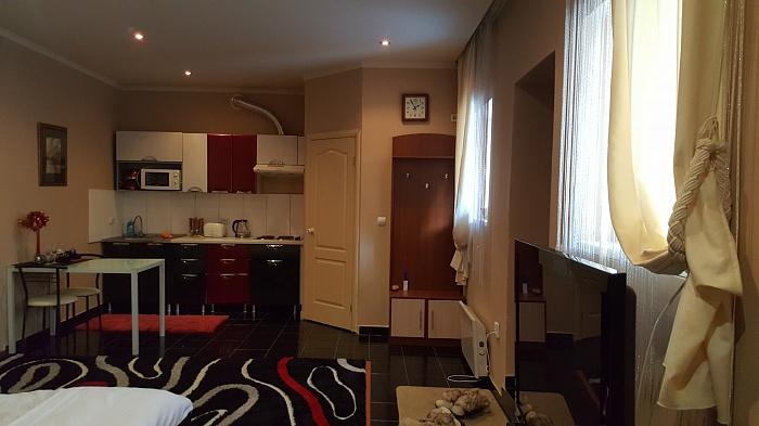 1-комнатная квартира посуточно в Ужгороде. ул. Фединца, 62. Фото 1