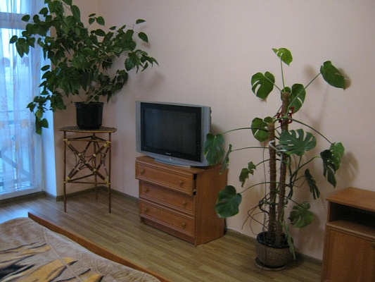 1-комнатная квартира посуточно в Ковеле. ул. Мичурина, 3. Фото 1