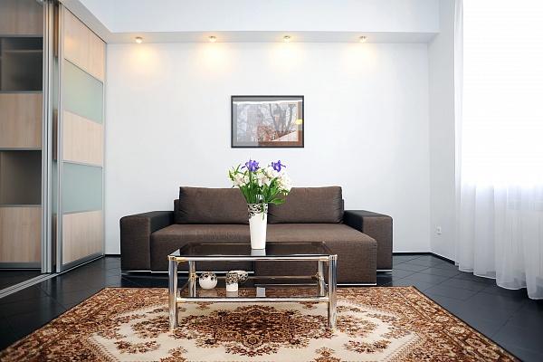 1-комнатная квартира посуточно в Киеве. Печерский район, ул. Крещатик, 25. Фото 1