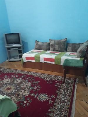 1-комнатная квартира посуточно в Киеве. Шевченковский район, ул. Пушкинская, 8. Фото 1